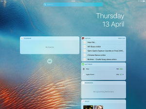 notion widget